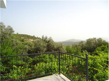 Villa Grapes View